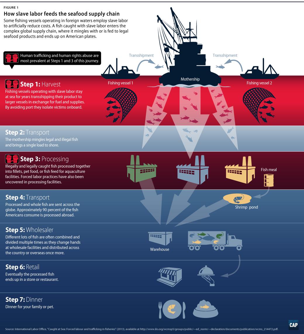 Seafood Slavery - Center for American Progress
