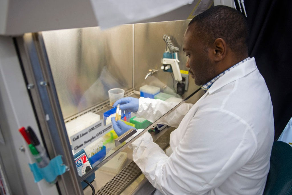 A biologist works with serum samples in a study of an experimental Ebola vaccine in February 2015.