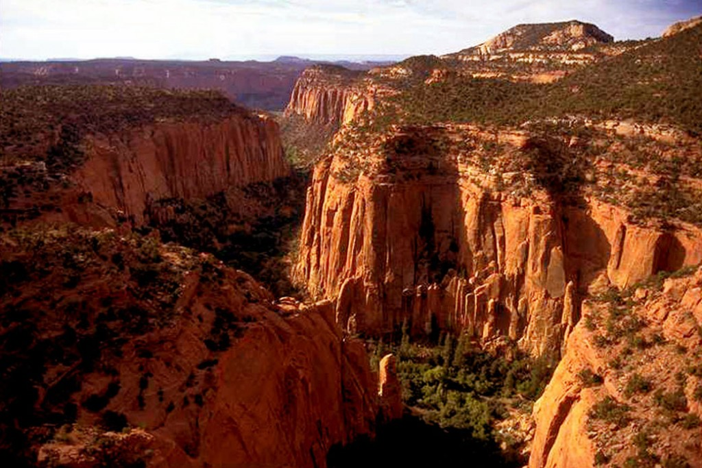 The Upper Gulch section of the Escalante Canyons  features sheer sandstone walls, broken occasionally by tributary canyons.