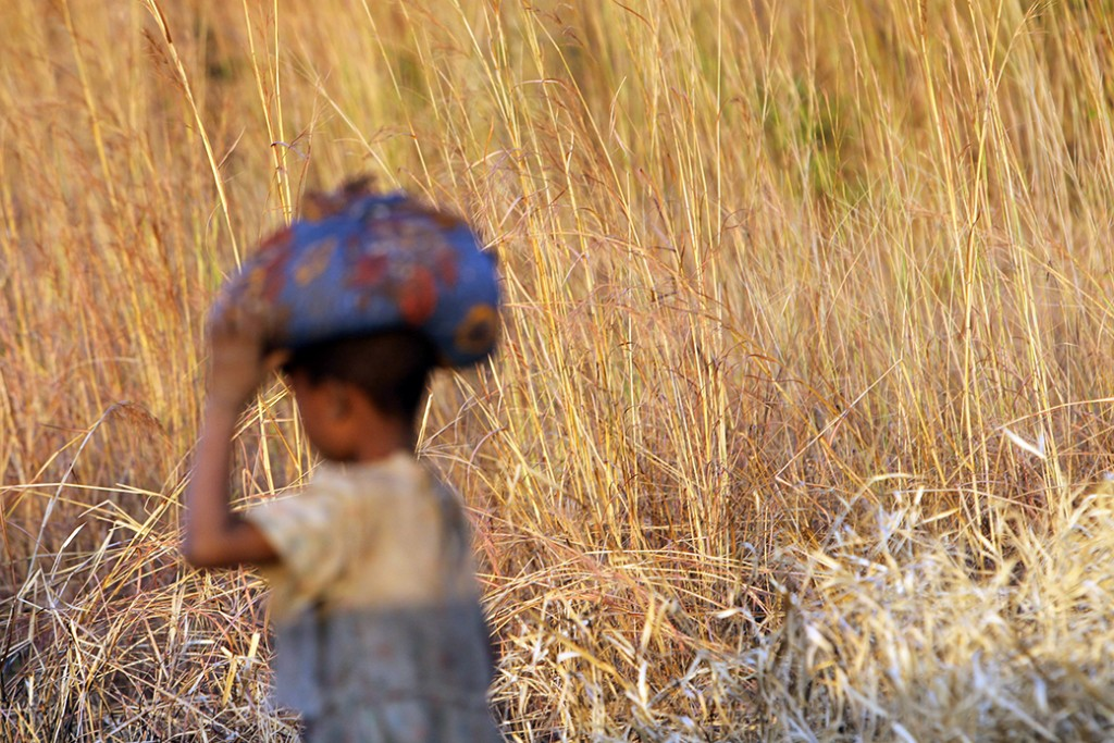 A young boy goes home with a bag full of grain he picked from a truck that overturned, in the forest in Machinga, about 200 kilometers northeast of Blantyre, Malawi, May 24, 2016.