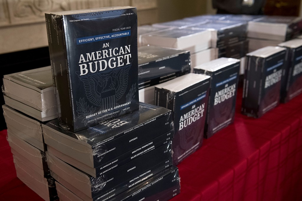 Copies of President Donald Trump's fiscal year 2019 budget sit on a table at the House Budget Committee on Capitol Hill in Washington, February 12, 2018.