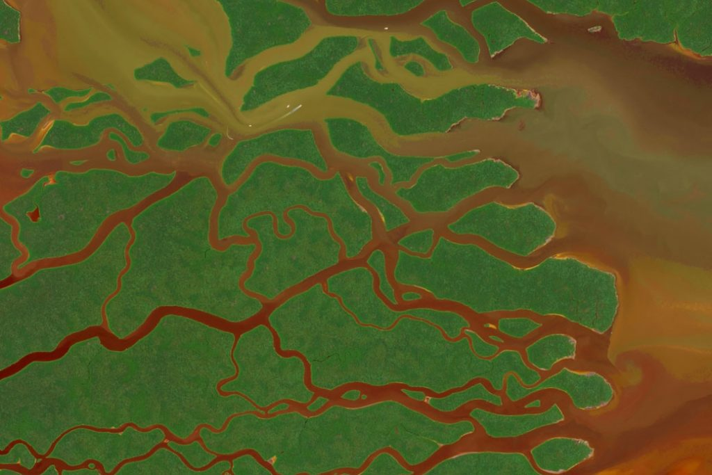 DigitalGlobe satellite image of the Everglades National Park in Florida, September 2017.