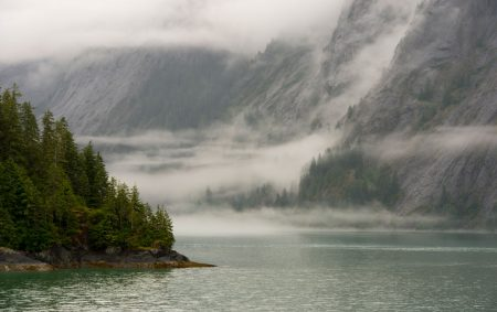 Fraud in the Tongass