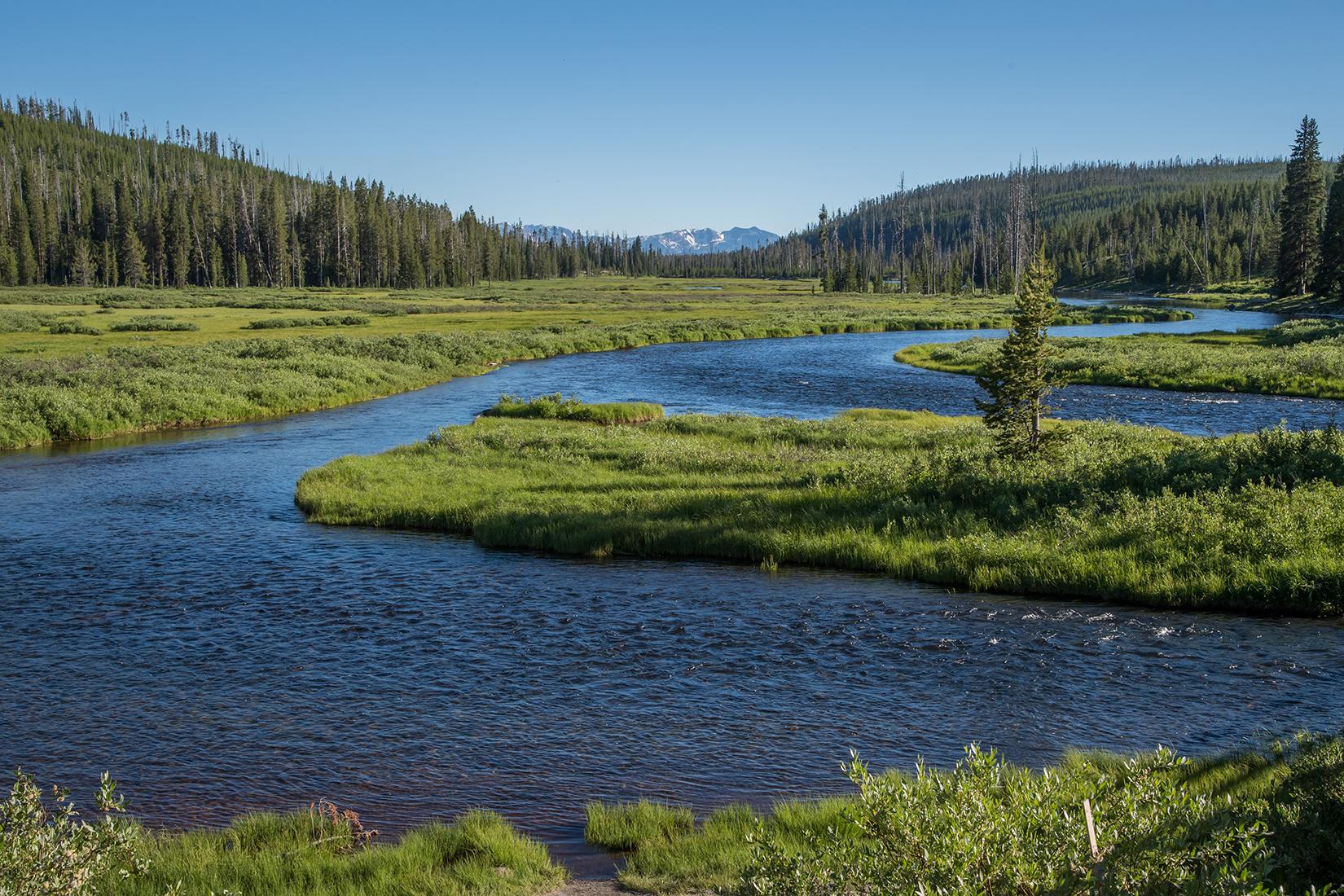 Measuring Conservation Progress in North America