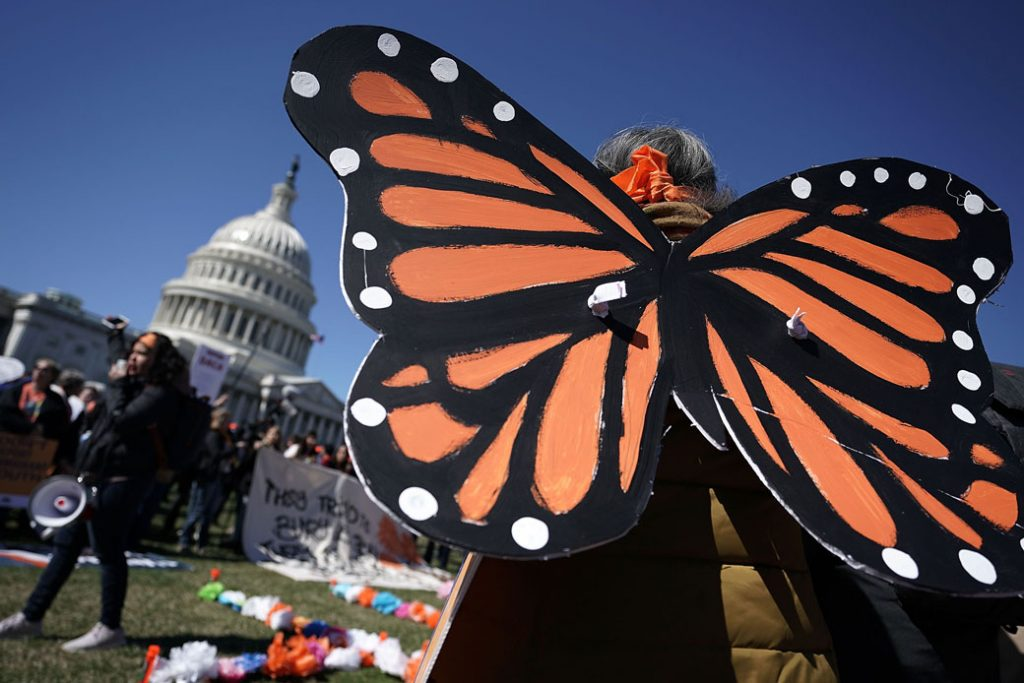 An immigration activist wears monarch butterfly wings for a march on Capitol Hill in Washington, D.C., March 2018.
