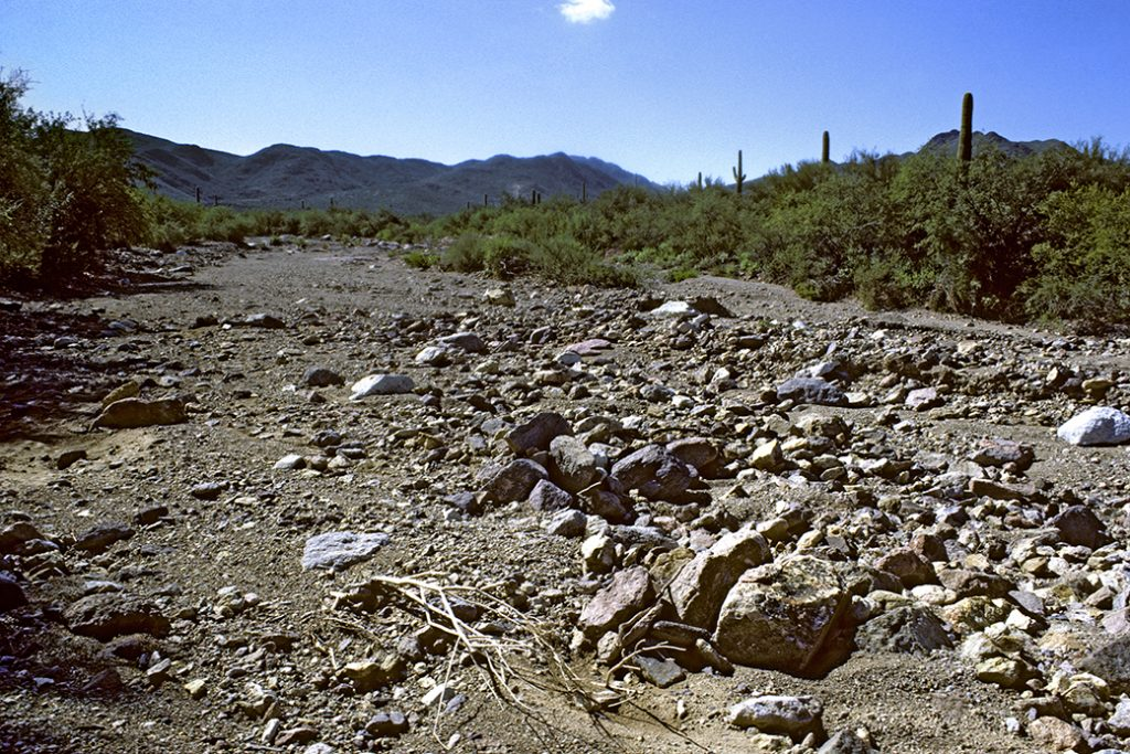 An arroyo, or dry streambed, is seen in the Sonoran Desert in the Tucson Mountains, Tucson, Arizona.