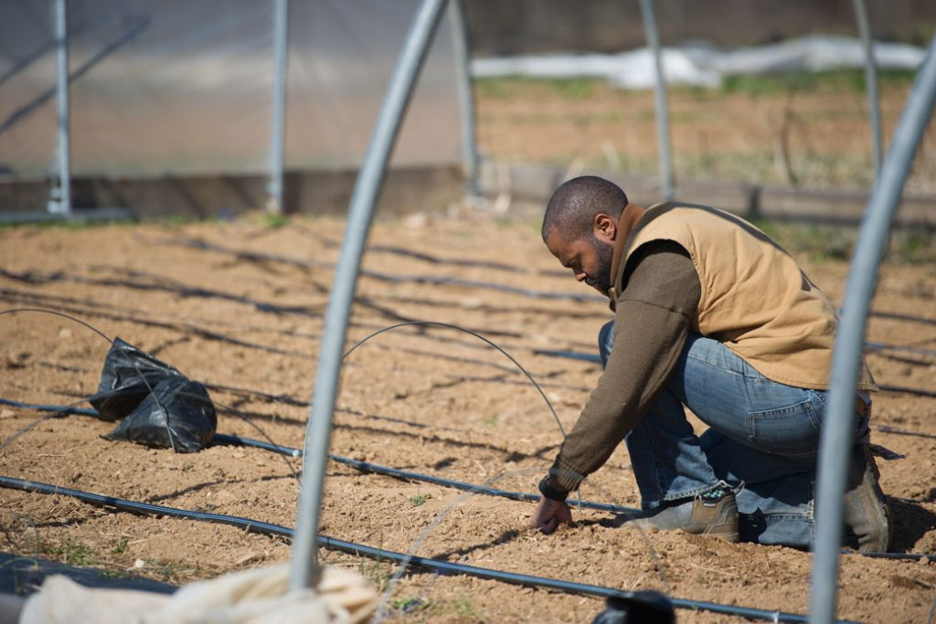 An African American farmer examines an irrigation system.