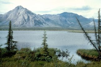 The Companies With the Best Kept Secret in the Arctic Refuge