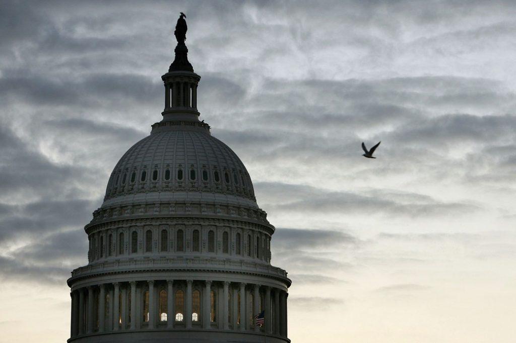 A bird flies past the U.S. Capitol in Washington, D.C., October 2006.