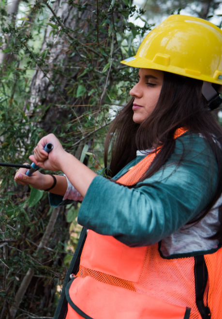 Olivia Cohea practices using an increment borer during one of her forestry classes.