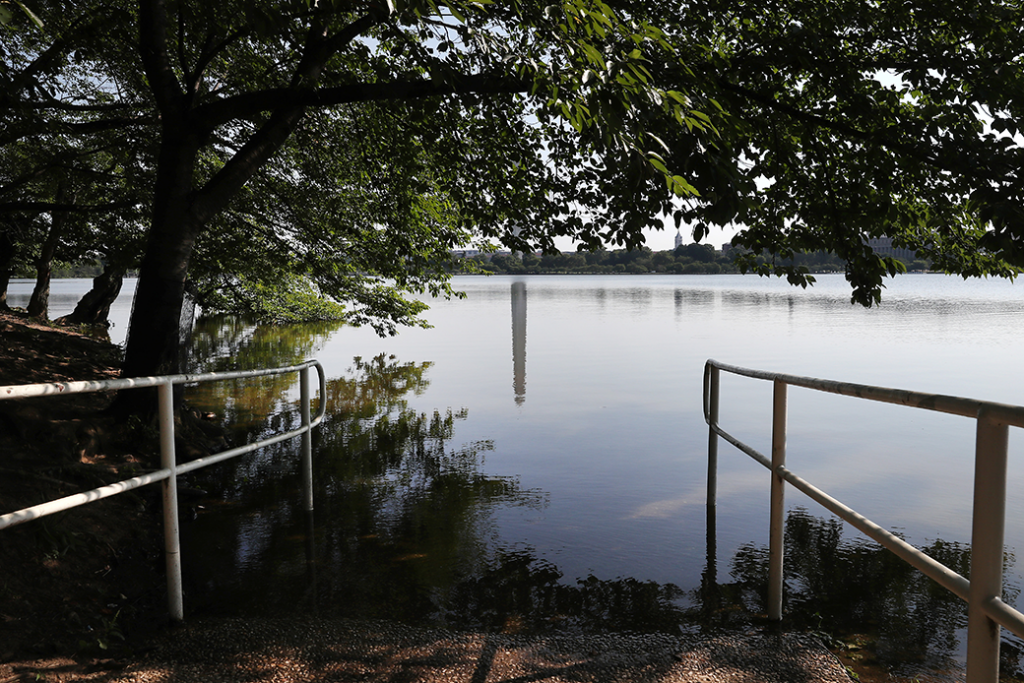 The Tidal Basin's crumbling seawall and sidewalks are routinely underwater due to rising sea levels, Washington, D.C., July 2019.