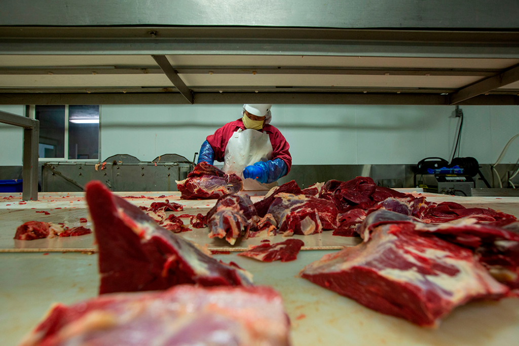 A butcher chops up beef at Jones Meat & Food Services in Rigby, Idaho, May 2020. Thousands of meat and poultry workers in the United States have contracted the coronavirus in processing plants.