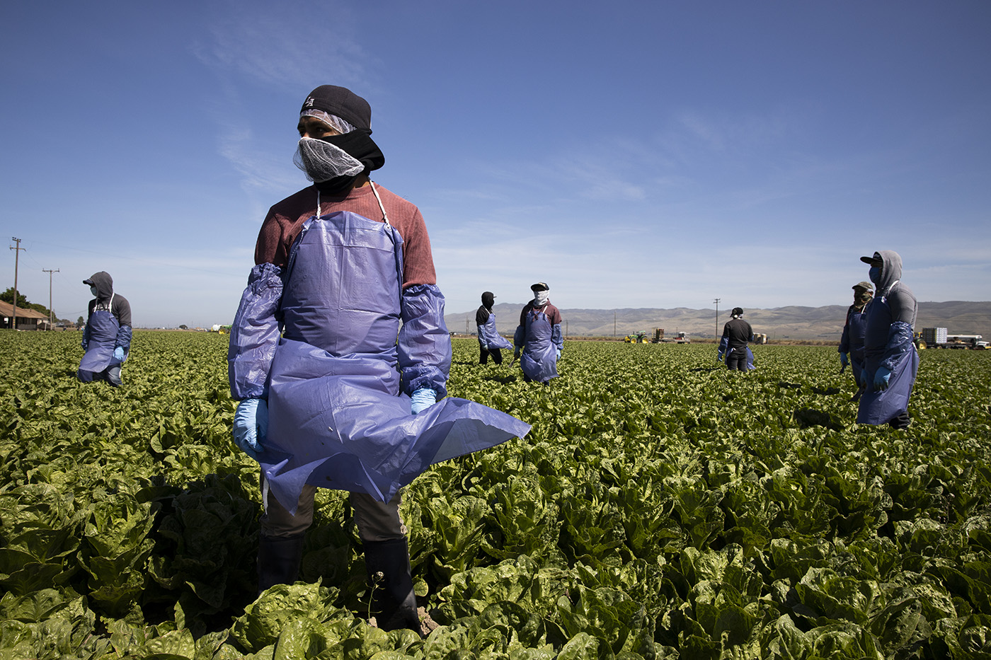 Protecting Undocumented Workers on the Pandemic's Front Lines