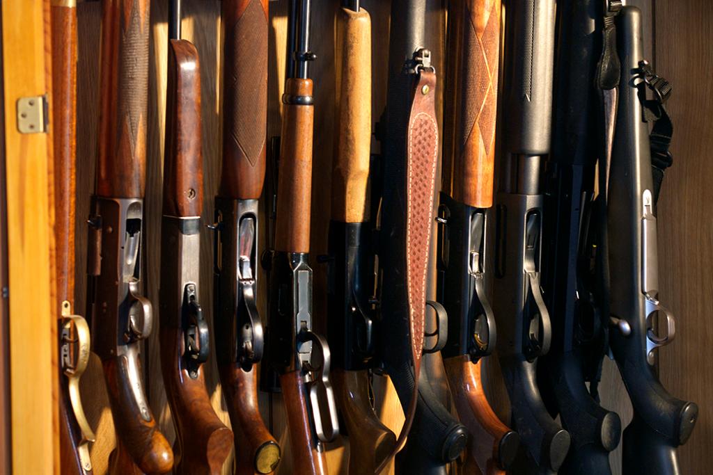 Diez rifles y escopetas enfilados en una caja de armas de cazador.