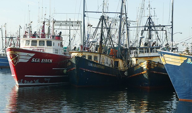 Fishing boats are shown docked at the pier in New Bedford, Massachusetts.
