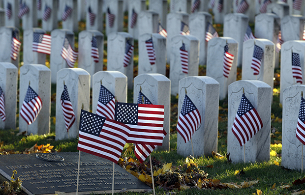 American flags are on display at Rosehill Cemetery for Veterans Day in Chicago