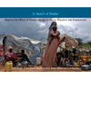 In Search of Shelter: Mapping the Effects of Climate Change on Human Migration and Displacement