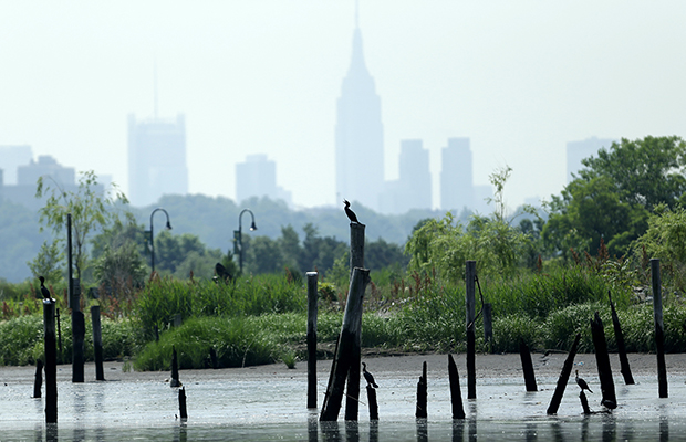 A group of cormorants stands on pilings on the Hackensack River in New Jersey with the New York City skyline in the background, Tuesday, June 18, 2013. Superstorm Sandy caused tens of billions of dollars in damages when it pummeled the region after roaring ashore in New York and New Jersey last fall.