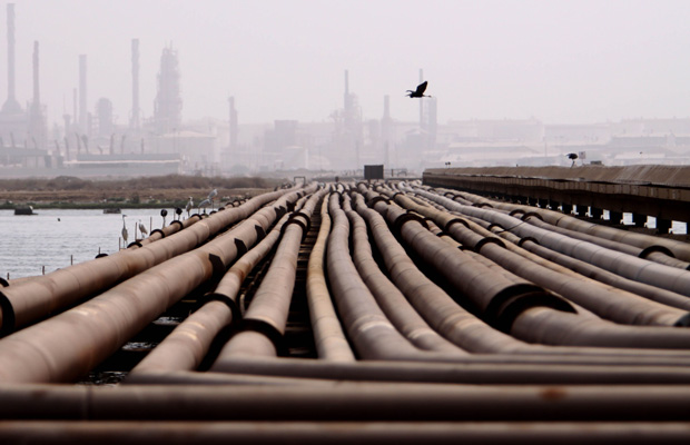Sea birds stand on oil pipelines on a hot, humid day near a refinery in Sitra, Bahrain, in the Persian Gulf.