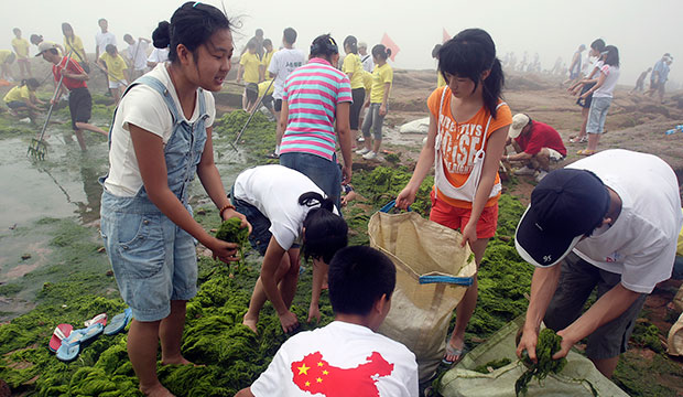 Young volunteers clean up a beach thick with blue-green algae in Qingdao, eastern China, in advance of the 2008 Summer Olympic Games.
