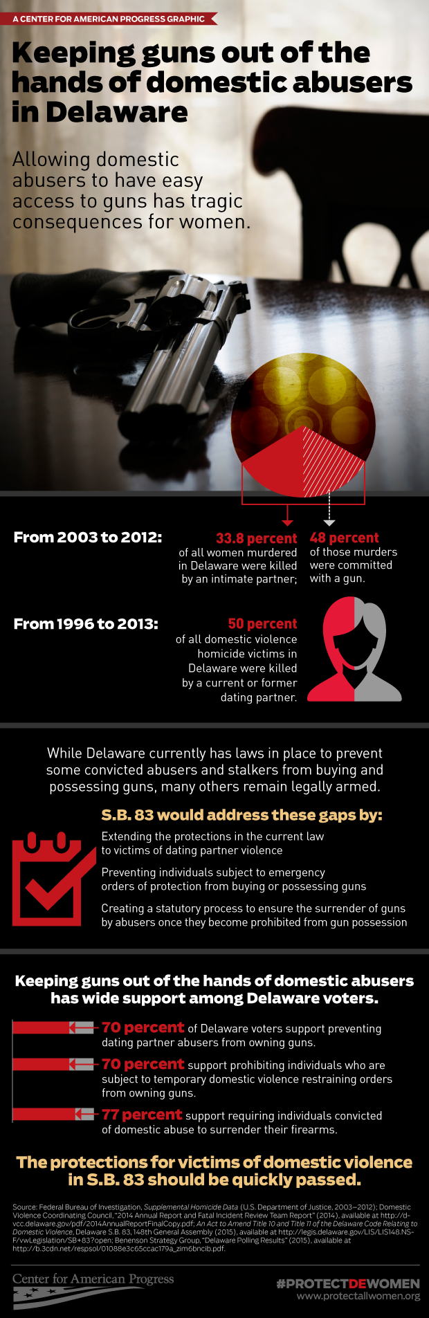 Delaware domestic violence infographic