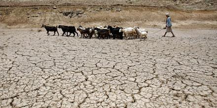 Yemen drought