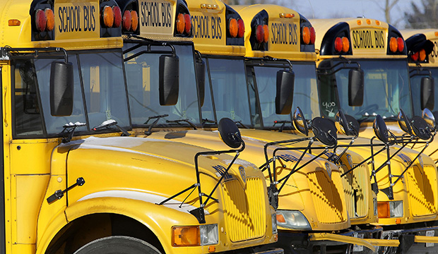 Public school buses are parked in Springfield, Illinois.