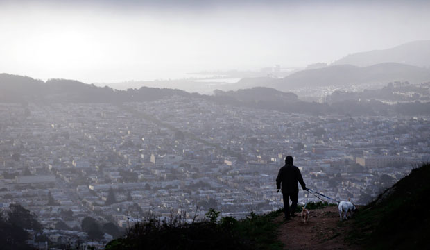 A person walks dogs on Mount Davidson overlooking San Francisco in the early morning hours of March 21, 2014.