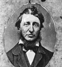 Its Easy Being Green Happy Birthday Henry David Thoreau